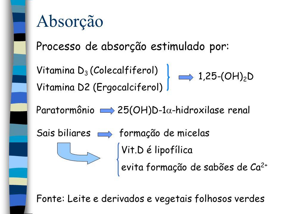 Absorção Processo de absorção pelo enterócito 1,25 (OH) 2 vit D 3 PTH Calbindina 1,25 (OH) 2 vit D 3 Ca 2+ Ca 2+ ATPase Ptn ligadora de cálcio Ca 2+ p p p p p p p p Na +