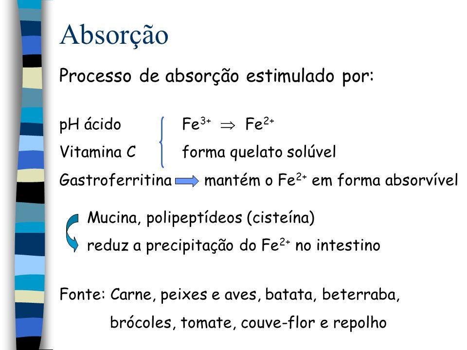 Absorção Intestino Ptn ligadora de ferro Heme p p p p 2 Fe 2+ Secreção Fe 2+ Camada de apoferritina Ferritina Fe 2+ Hemoxidase Heme -(Fe 2+ ) Transferrina -TF Reservatório intracelular (Xantina oxidase)