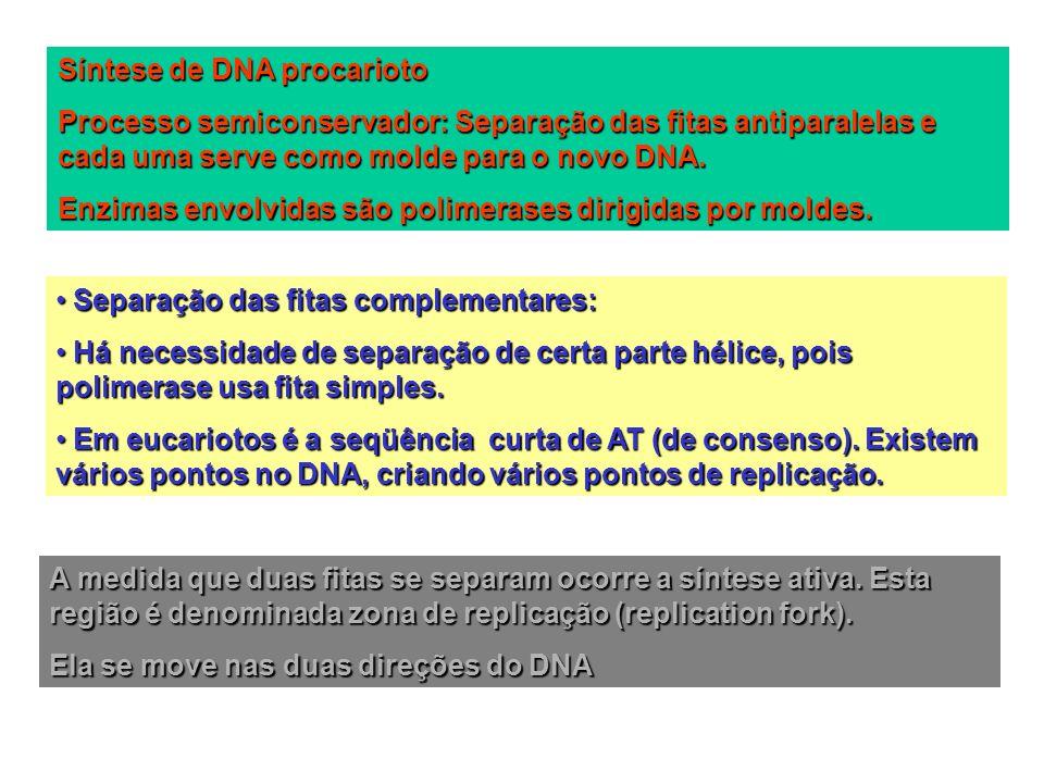 Requeridas proteínas para a formação (pré-formação ou pré priming) 1.DnaA: Liga-se seqüências ricas em AT fazendo com que a fita dupla se desfaça (requer ATP) 2.Proteínas de ligação do DNA de fita simples (SSB): desestabilizadoras da hélice.