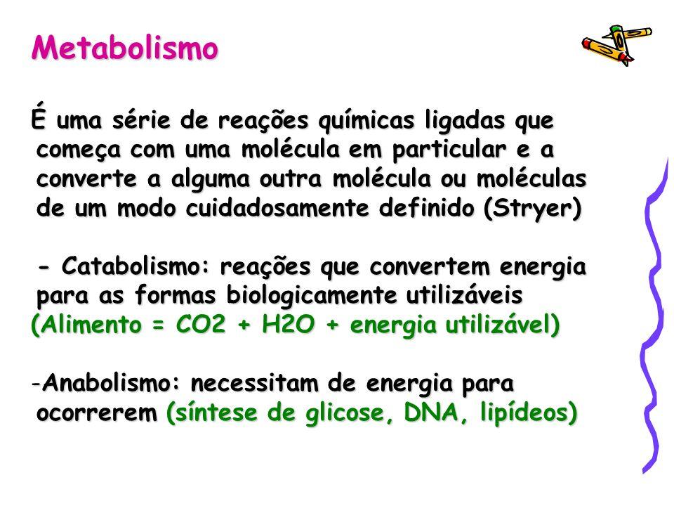 Metabolismo É uma série de reações químicas ligadas que começa com uma molécula em particular e a converte a alguma outra molécula ou moléculas de um modo cuidadosamente definido (Stryer) - Catabolismo: reações que convertem energia para as formas biologicamente utilizáveis (Alimento = CO2 + H2O + energia utilizável) -Anabolismo: necessitam de energia para ocorrerem (síntese de glicose, DNA, lipídeos)
