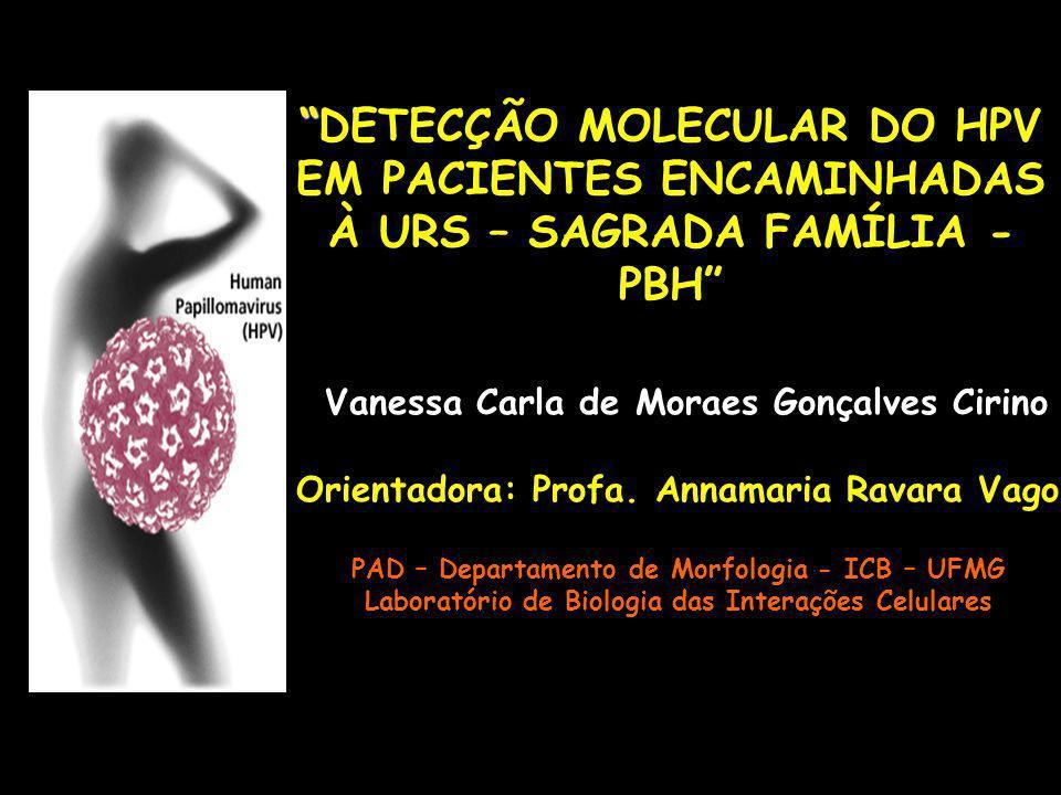 DETECÇÃO MOLECULAR DO HPV EM PACIENTES ENCAMINHADAS À URS – SAGRADA FAMÍLIA - PBH Vanessa Carla de Moraes Gonçalves Cirino Orientadora: Profa. Annamar