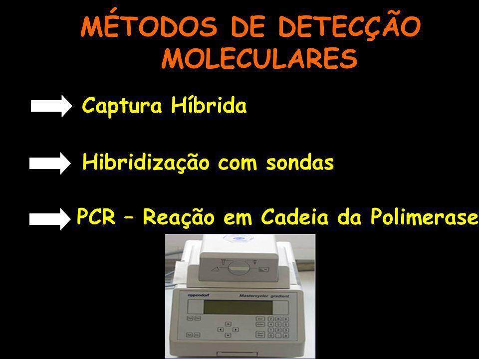 MÉTODOS DE DETECÇÃO MOLECULARES Captura Híbrida Hibridização com sondas PCR – Reação em Cadeia da Polimerase
