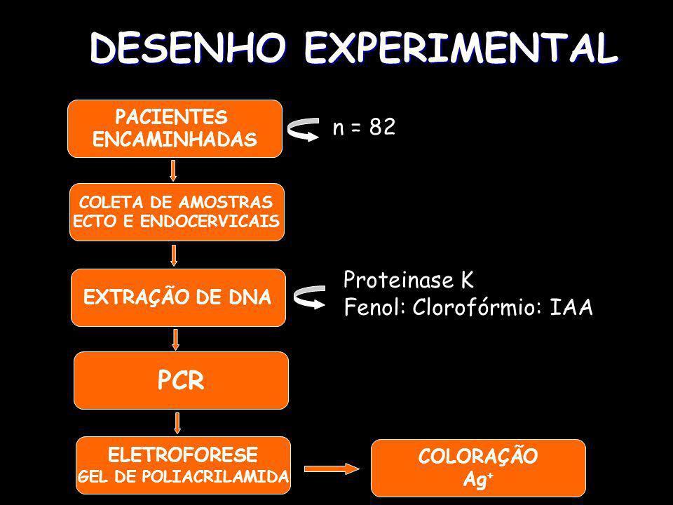 DESENHO EXPERIMENTAL PACIENTES ENCAMINHADAS n = 82 COLETA DE AMOSTRAS ECTO E ENDOCERVICAIS EXTRAÇÃO DE DNA COLORAÇÃO Ag + PCR ELETROFORESE GEL DE POLIACRILAMIDA Proteinase K Fenol: Clorofórmio: IAA