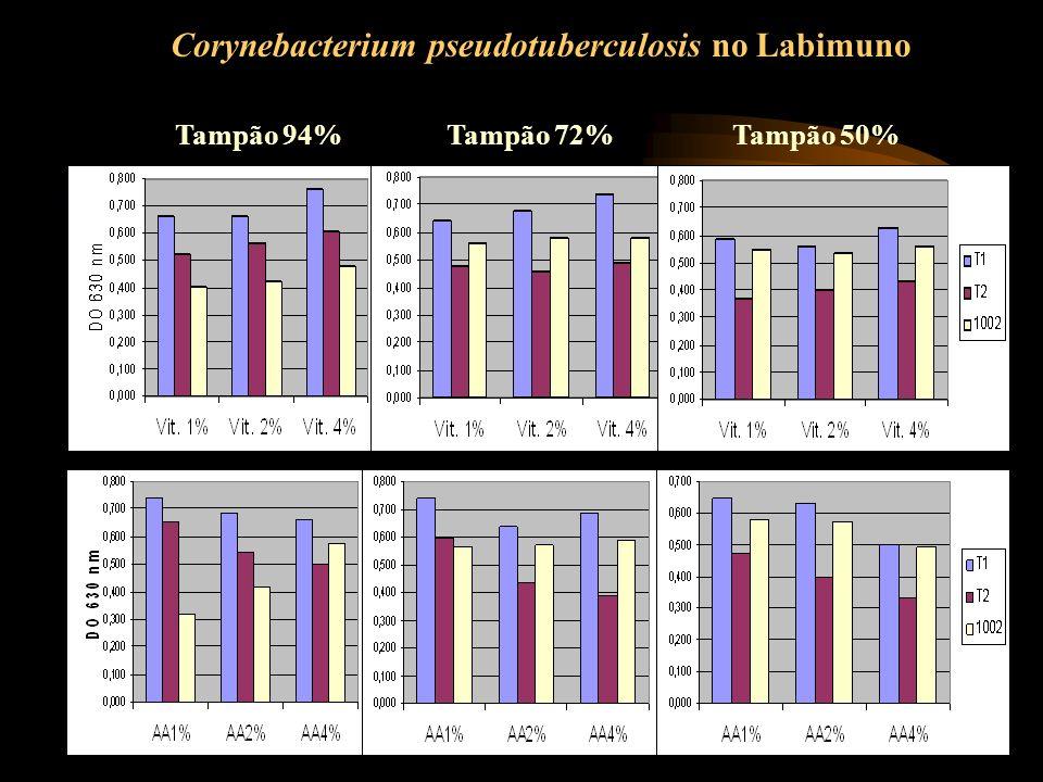 Tampão 94%Tampão 72%Tampão 50% Corynebacterium pseudotuberculosis no Labimuno