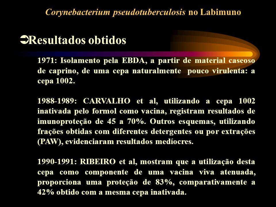 Resultados obtidos Corynebacterium pseudotuberculosis no Labimuno 1971: Isolamento pela EBDA, a partir de material caseoso de caprino, de uma cepa nat
