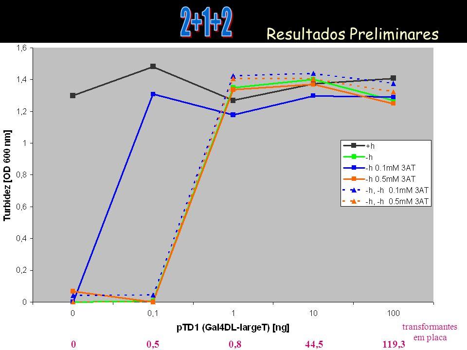 Resultados Preliminares 00,50,844,5119,3 transformantes em placa