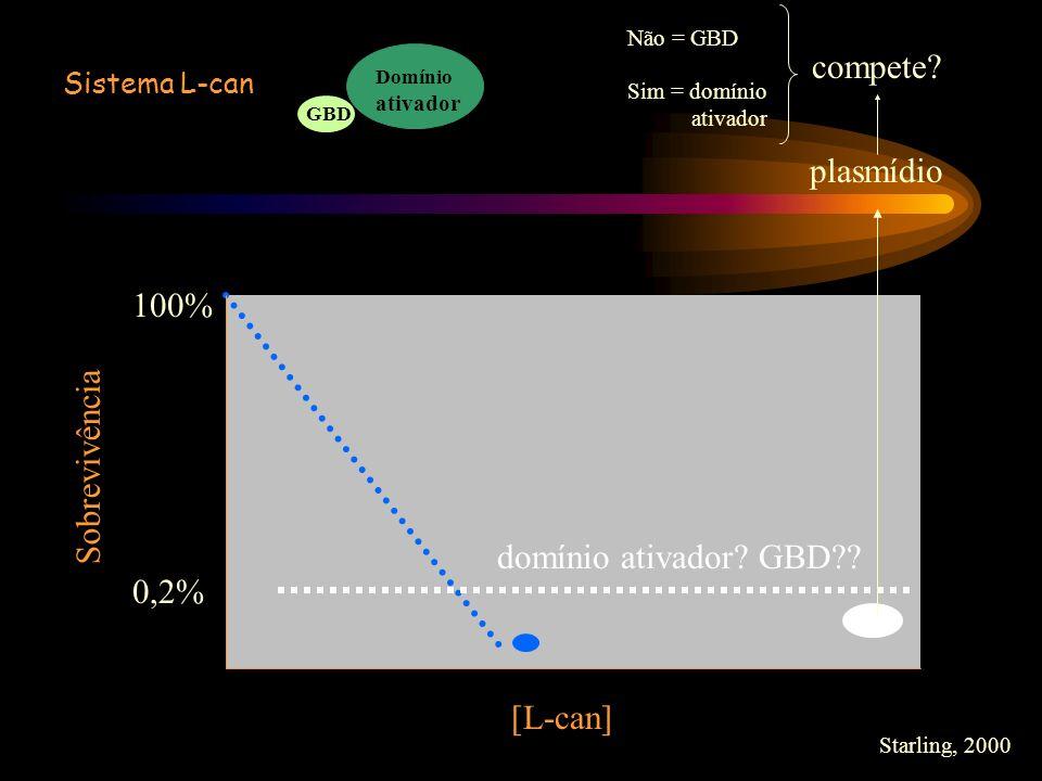 100% 0,2% [L-can] domínio ativador? GBD?? plasmídio compete? Não = GBD Sim = domínio ativador Sobrevivência Starling, 2000 Sistema L-can Domínio ativa
