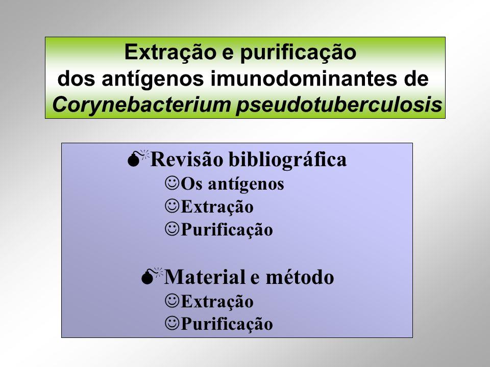 Extração e purificação dos antígenos imunodominantes de Corynebacterium pseudotuberculosis Revisão bibliográfica Os antígenos Extração Purificação Mat