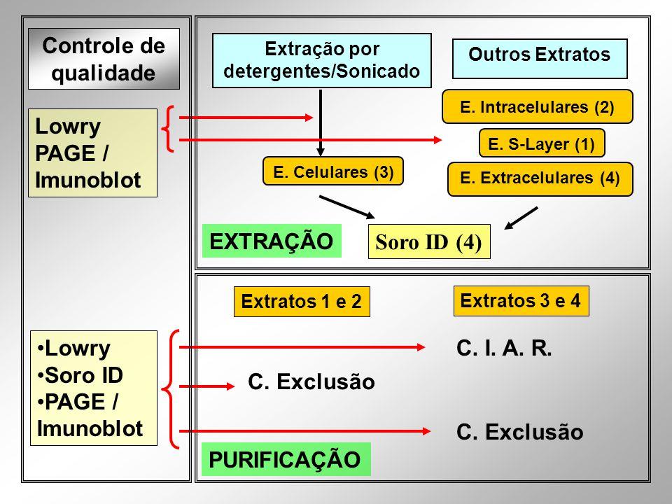 Extração por detergentes/Sonicado E. Celulares (3) Controle de qualidade Lowry PAGE / Imunoblot Outros Extratos E. Intracelulares (2) E. Extracelulare
