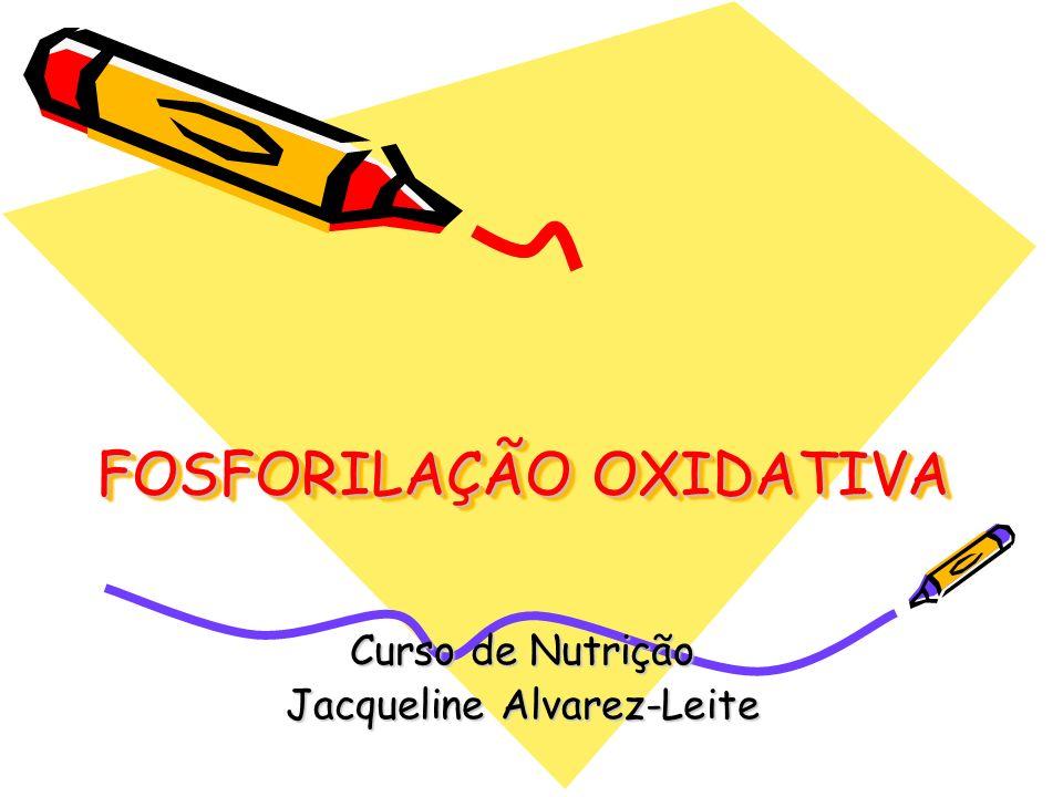 FOSFORILAÇÃO OXIDATIVA Curso de Nutrição Jacqueline Alvarez-Leite