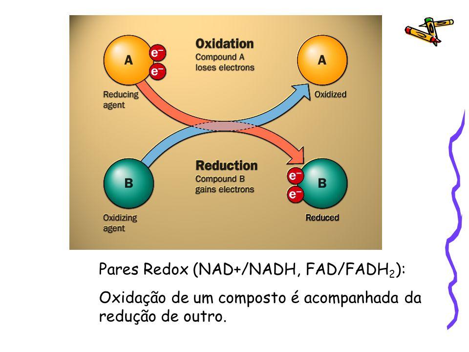 Pares Redox (NAD+/NADH, FAD/FADH 2 ): Oxidação de um composto é acompanhada da redução de outro.