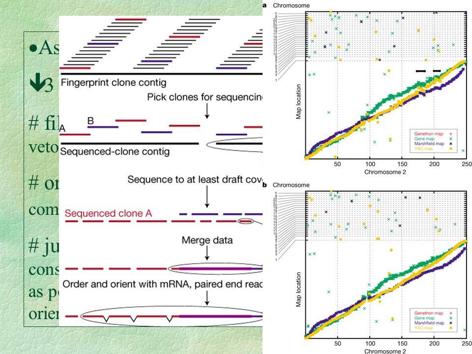 Assembry: ê 3 passos: filtrar: elimina sequências não humanas, vetor(BAC), etc. ordenar: comparam o padrão de digestão virtual com o real (152 perdido