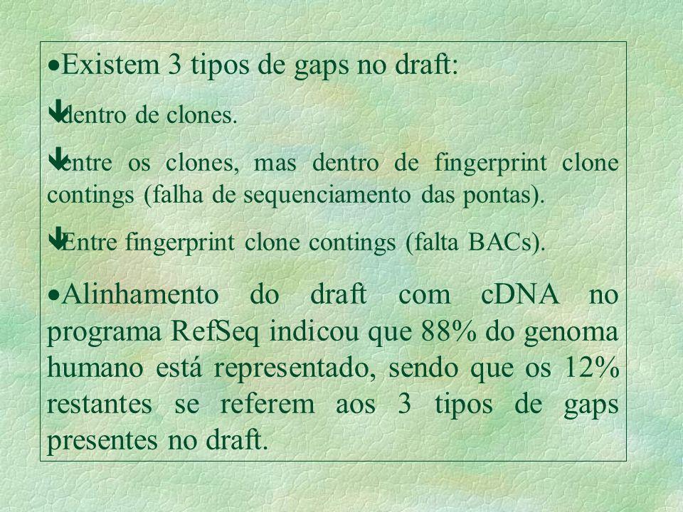 Existem 3 tipos de gaps no draft: êdentro de clones. êentre os clones, mas dentro de fingerprint clone contings (falha de sequenciamento das pontas).