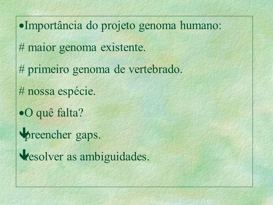 Importância do projeto genoma humano: maior genoma existente. primeiro genoma de vertebrado. nossa espécie. O quê falta? êpreencher gaps. êresolver as