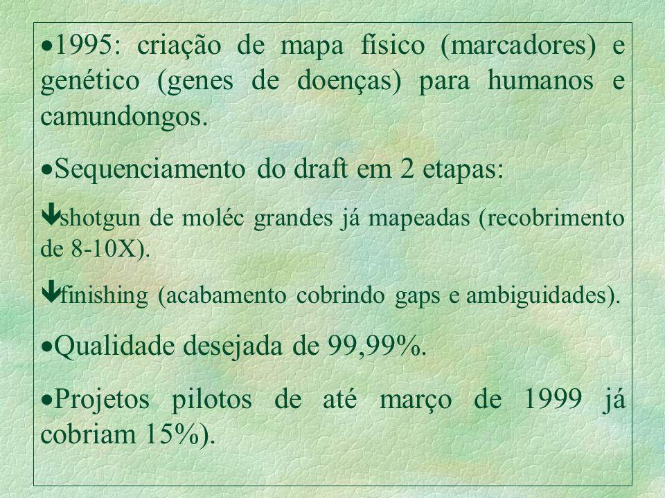 1995: criação de mapa físico (marcadores) e genético (genes de doenças) para humanos e camundongos. Sequenciamento do draft em 2 etapas: ê shotgun de