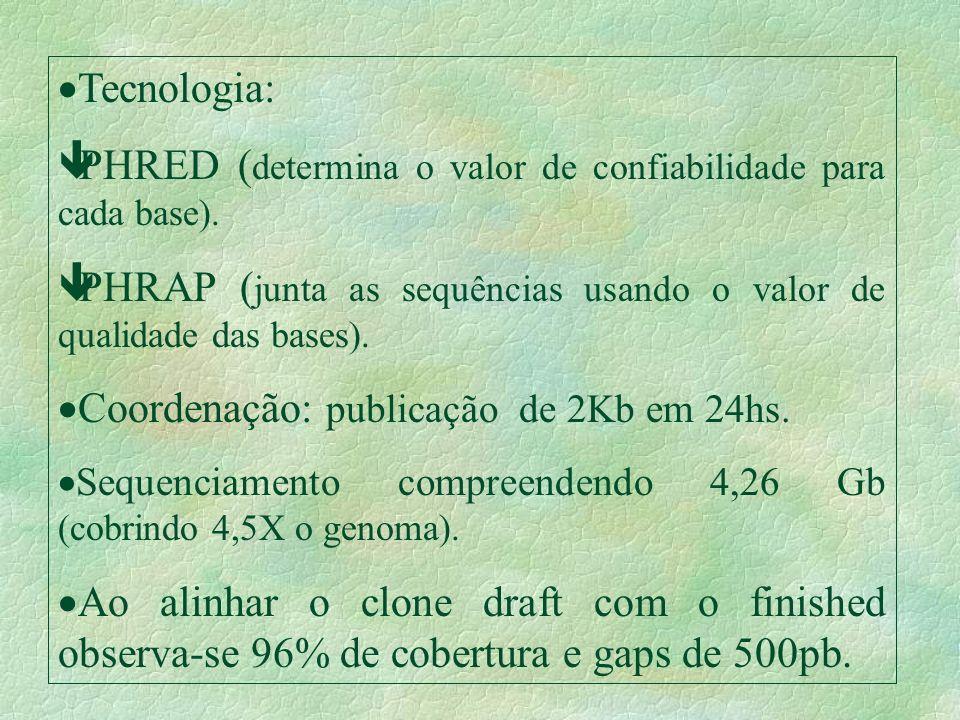 Tecnologia: êPHRED ( determina o valor de confiabilidade para cada base). êPHRAP ( junta as sequências usando o valor de qualidade das bases). Coorden