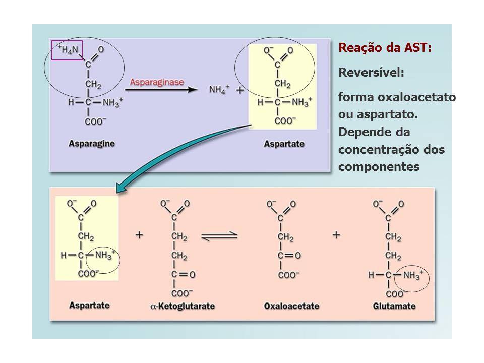 Reação da AST: Reversível: forma oxaloacetato ou aspartato. Depende da concentração dos componentes