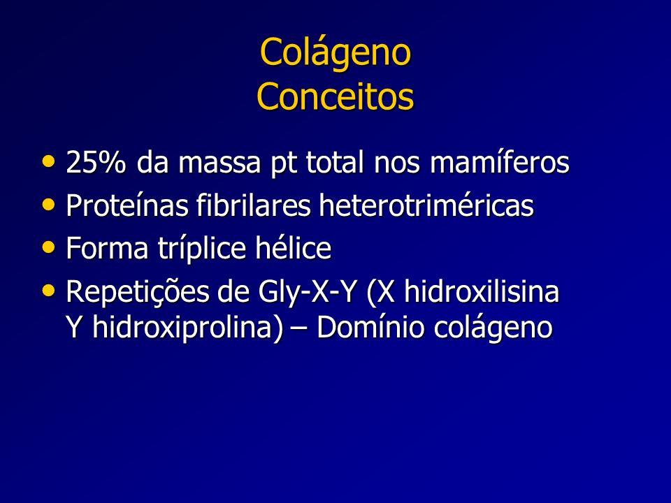 Colágeno Conceitos 25% da massa pt total nos mamíferos 25% da massa pt total nos mamíferos Proteínas fibrilares heterotriméricas Proteínas fibrilares