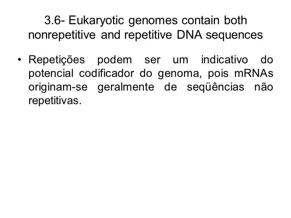 3.6- Eukaryotic genomes contain both nonrepetitive and repetitive DNA sequences Repetições podem ser um indicativo do potencial codificador do genoma,