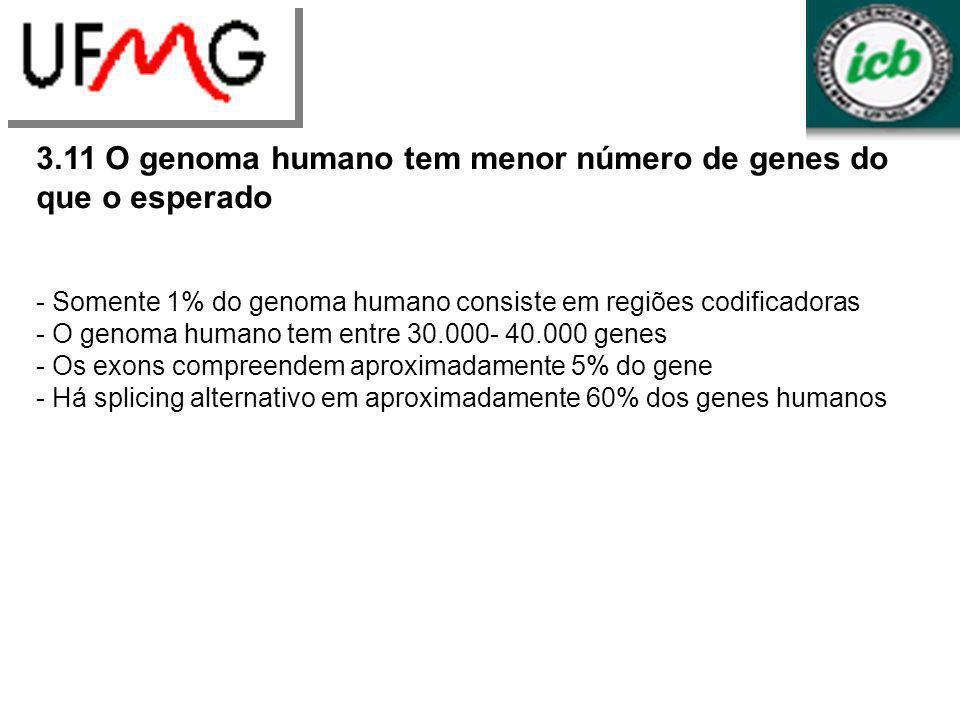 3.11 O genoma humano tem menor número de genes do que o esperado - Somente 1% do genoma humano consiste em regiões codificadoras - O genoma humano tem