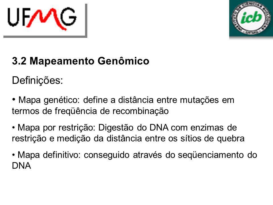 LGCMURLGA 3.2 Mapeamento Genômico Definições: Mapa genético: define a distância entre mutações em termos de freqüência de recombinação Mapa por restri