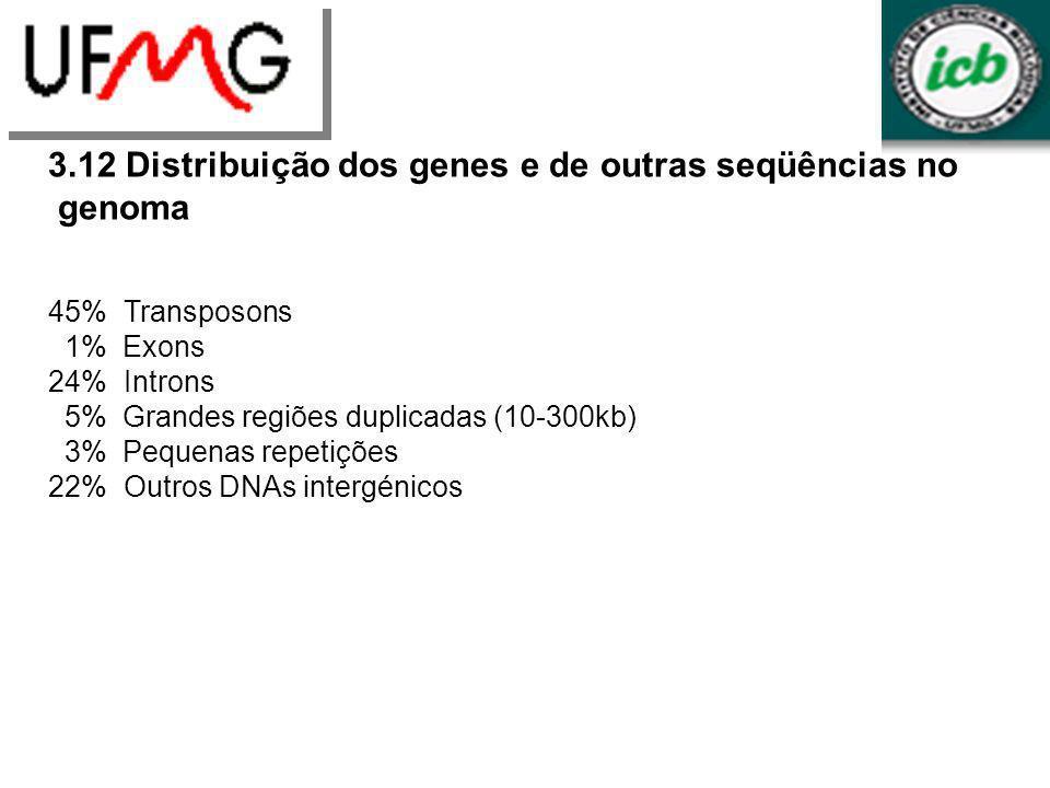 3.12 Distribuição dos genes e de outras seqüências no genoma 45% Transposons 1% Exons 24% Introns 5% Grandes regiões duplicadas (10-300kb) 3% Pequenas