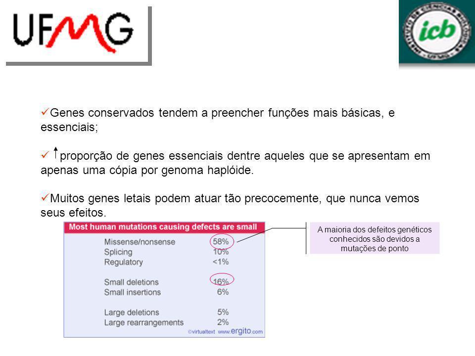 Genes conservados tendem a preencher funções mais básicas, e essenciais; proporção de genes essenciais dentre aqueles que se apresentam em apenas uma