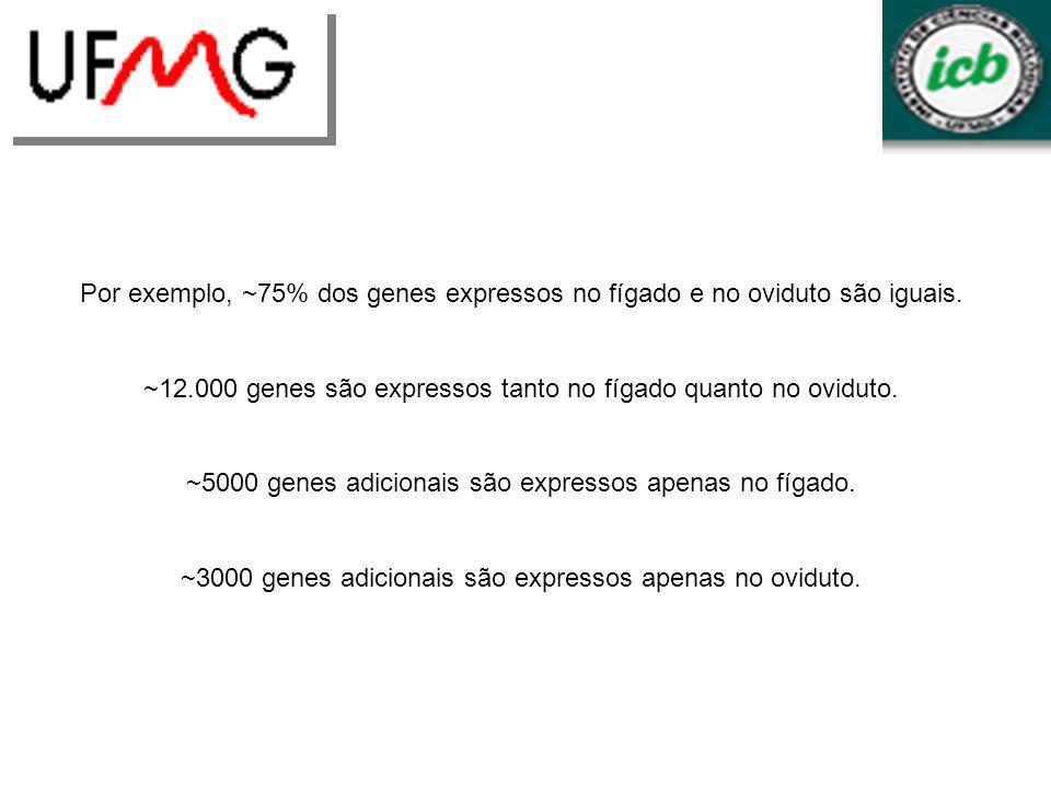 Por exemplo, ~75% dos genes expressos no fígado e no oviduto são iguais. ~12.000 genes são expressos tanto no fígado quanto no oviduto. ~5000 genes ad