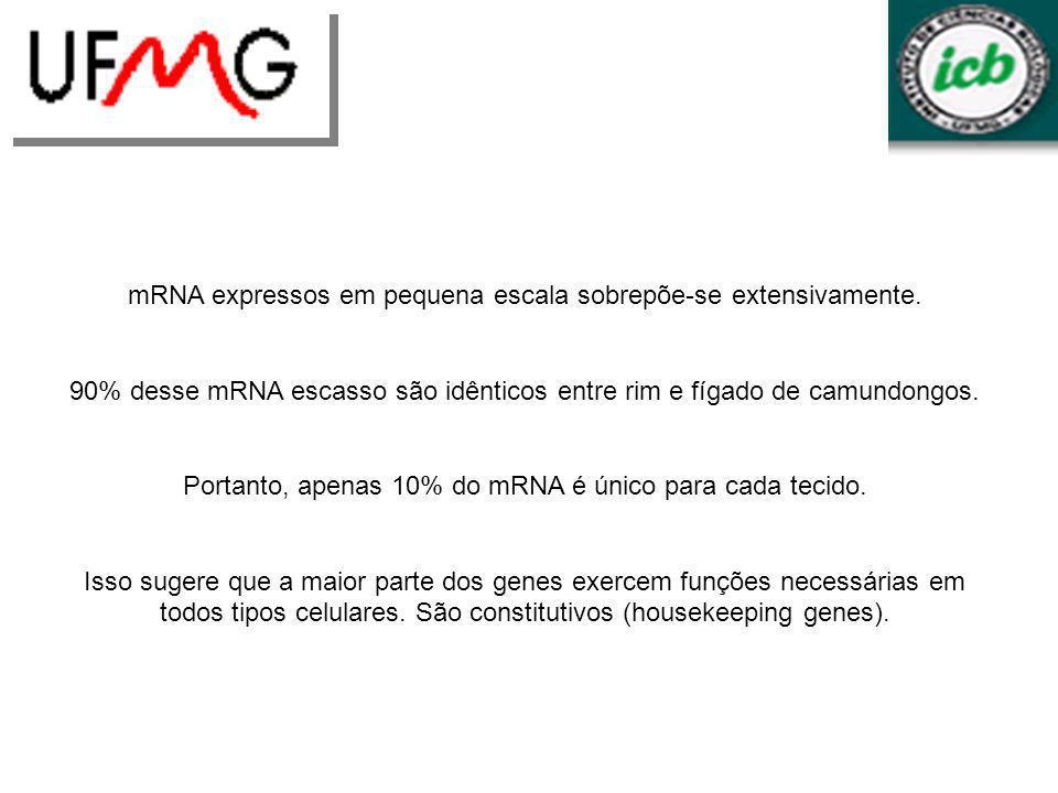 mRNA expressos em pequena escala sobrepõe-se extensivamente. 90% desse mRNA escasso são idênticos entre rim e fígado de camundongos. Portanto, apenas