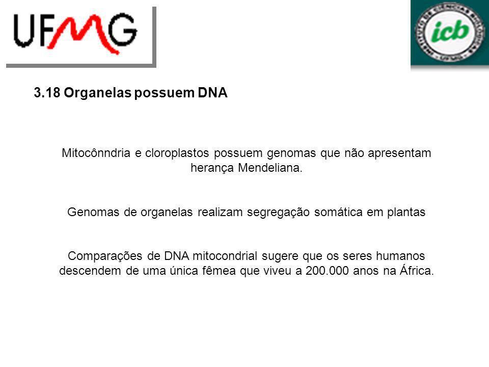 3.18 Organelas possuem DNA Mitocônndria e cloroplastos possuem genomas que não apresentam herança Mendeliana. Genomas de organelas realizam segregação