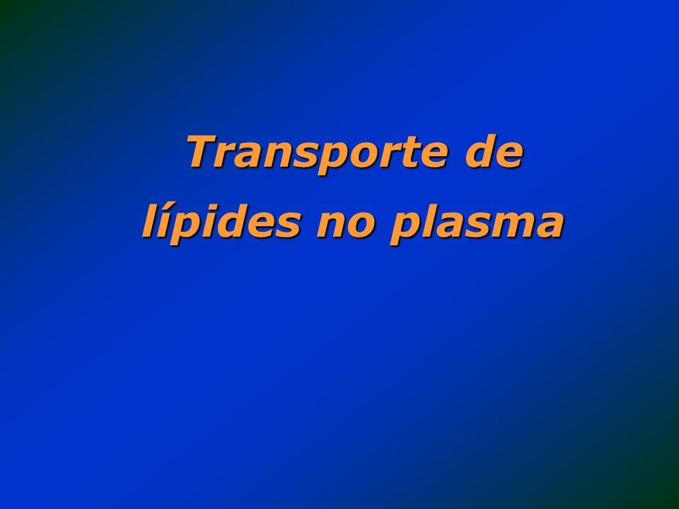 Principais lípides : Ácidos graxos (AG) Triglicérides (TG) Fosfolípides (PL) Colesterol