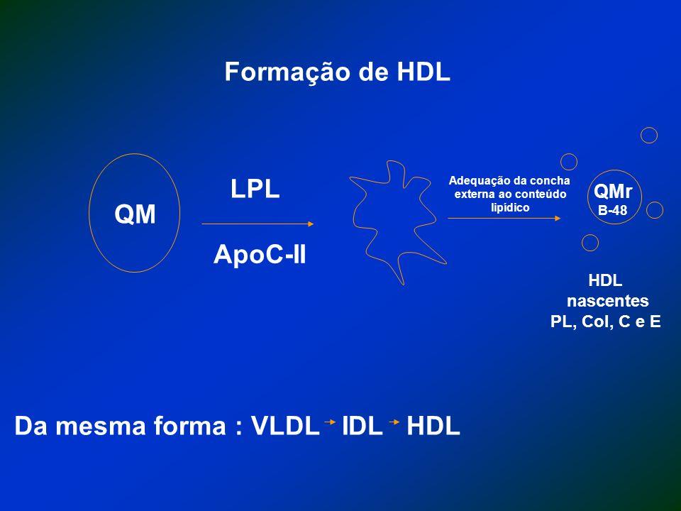 QM LPL ApoC-II QMr B-48 HDL nascentes PL, Col, C e E Formação de HDL Da mesma forma : VLDL IDL HDL Adequação da concha externa ao conteúdo lipídico
