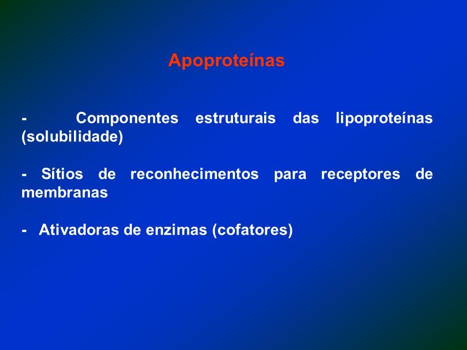 Apoproteínas - Componentes estruturais das lipoproteínas (solubilidade) - Sítios de reconhecimentos para receptores de membranas - Ativadoras de enzim