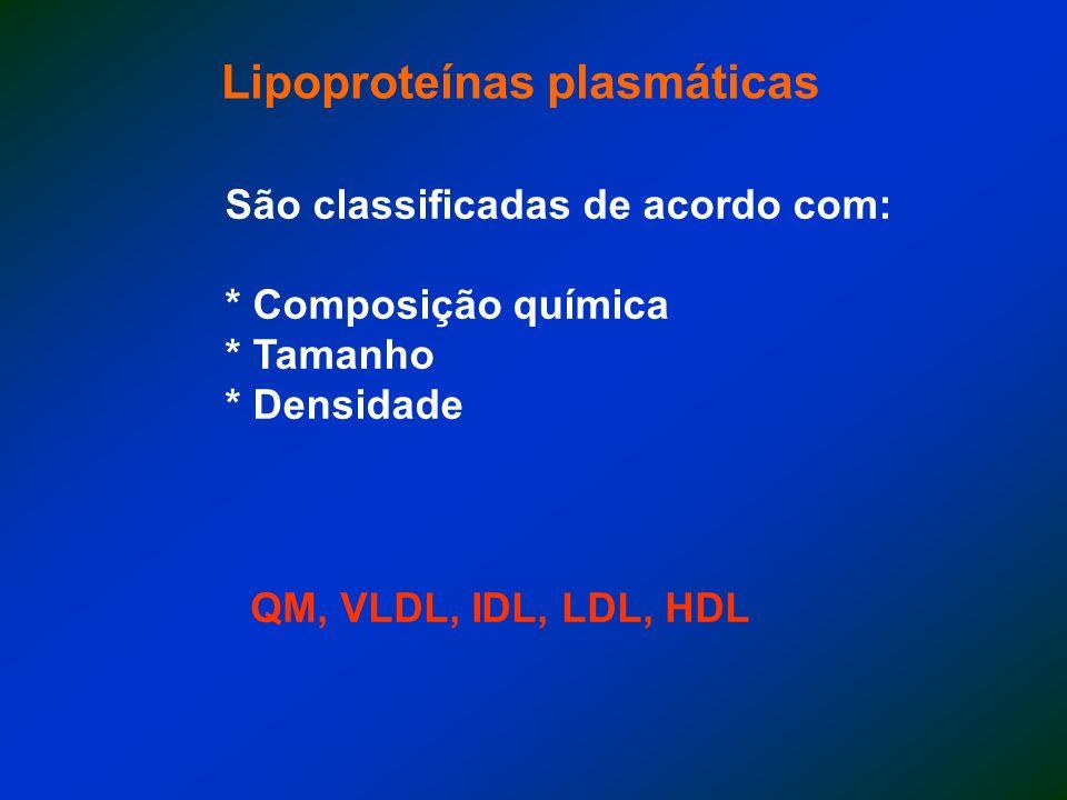 QM < VLDL IDL LDL HDL > Teor de lipídeos < Teor de proteínas >Diâmetro (possibilidade de entrar no vaso) QM < VLDL< IDL< LDL< HDL