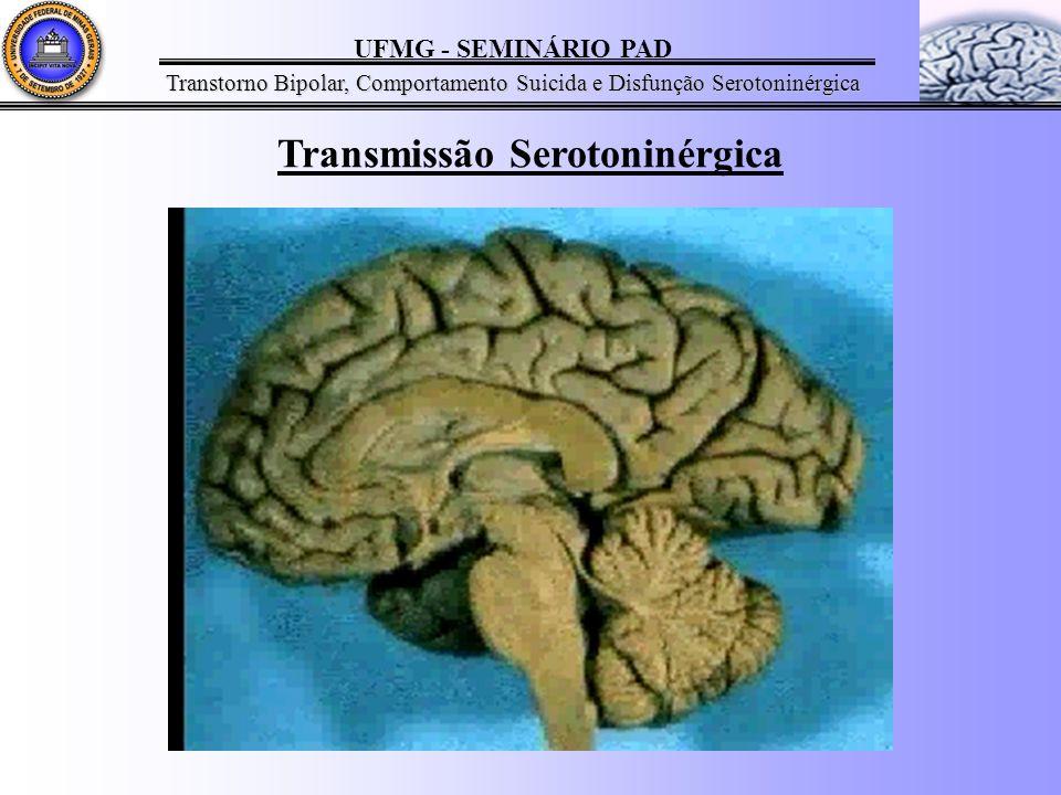 UFMG - SEMINÁRIO PAD Transtorno Bipolar, Comportamento Suicida e Disfunção Serotoninérgica Transmissão Serotoninérgica