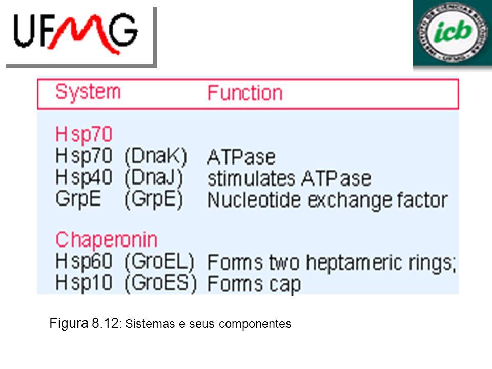 Figura 8.12 : Sistemas e seus componentes