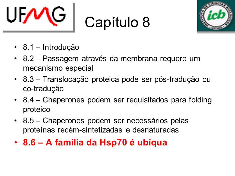 Capítulo 8 8.1 – Introdução 8.2 – Passagem através da membrana requere um mecanismo especial 8.3 – Translocação proteica pode ser pós-tradução ou co-t
