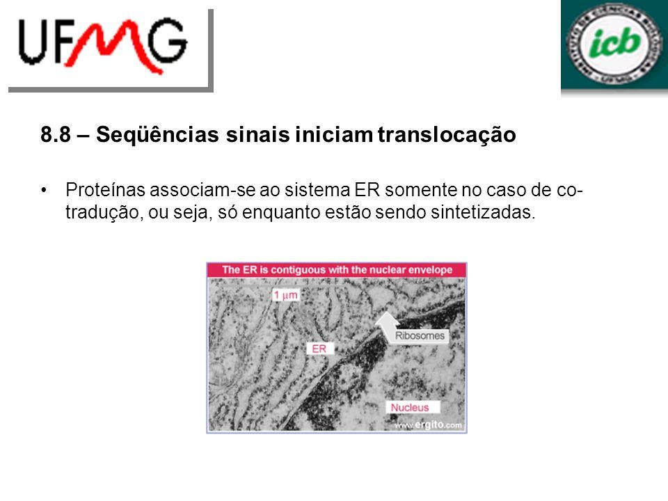 8.8 – Seqüências sinais iniciam translocação Proteínas associam-se ao sistema ER somente no caso de co- tradução, ou seja, só enquanto estão sendo sin
