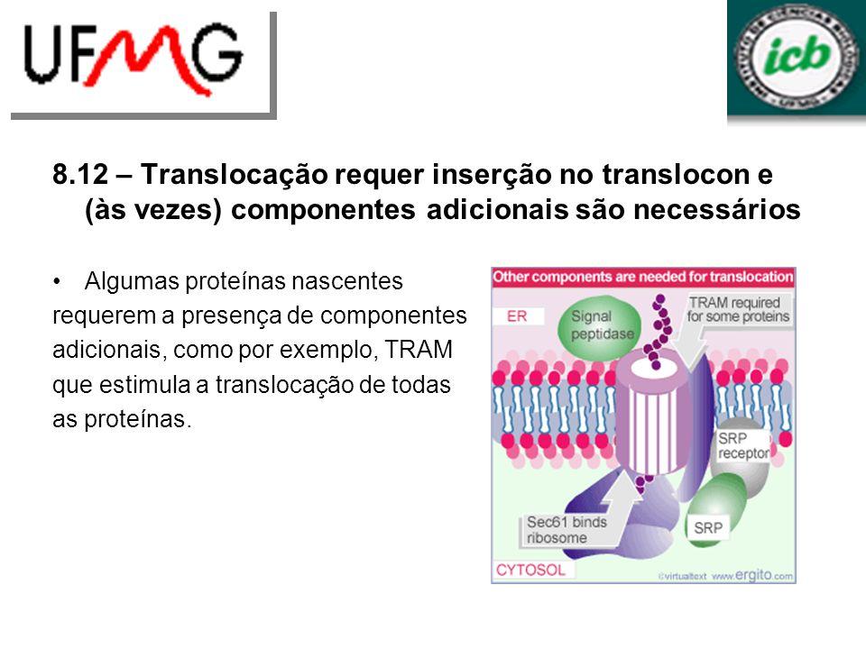 8.12 – Translocação requer inserção no translocon e (às vezes) componentes adicionais são necessários Algumas proteínas nascentes requerem a presença