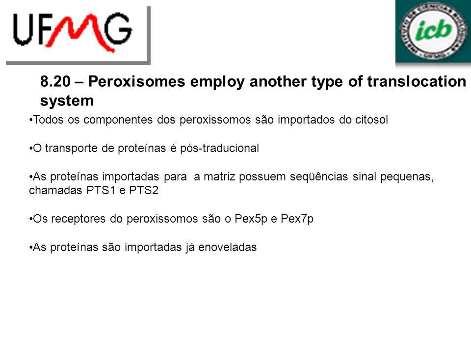 8.20 – Peroxisomes employ another type of translocation system Todos os componentes dos peroxissomos são importados do citosol O transporte de proteín