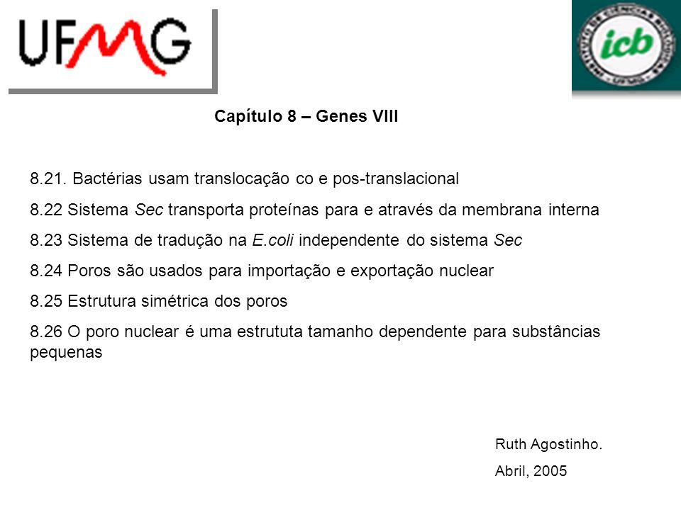 Ruth Agostinho. Abril, 2005 Capítulo 8 – Genes VIII 8.21. Bactérias usam translocação co e pos-translacional 8.22 Sistema Sec transporta proteínas par