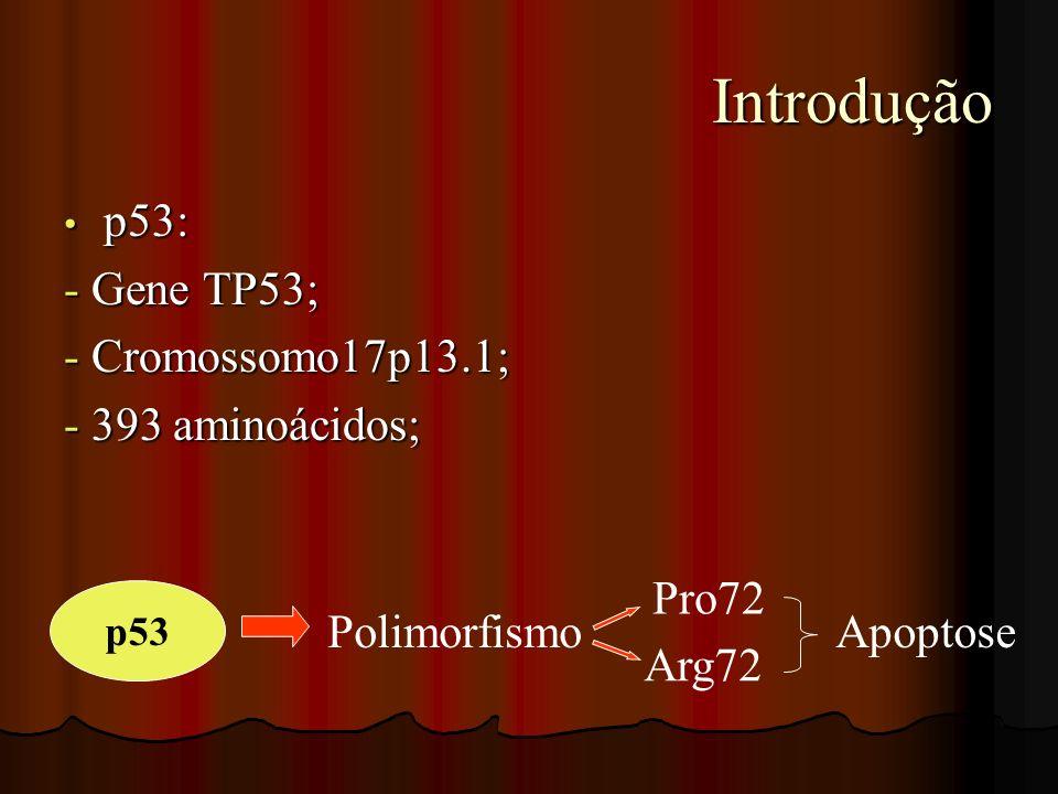 Introdução Introdução p53: p53: - Gene TP53; - Cromossomo17p13.1; - 393 aminoácidos; p53 Polimorfismo Pro72 Arg72 Apoptose