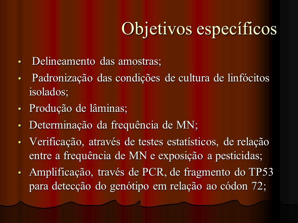 Objetivos específicos Objetivos específicos Delineamento das amostras; Delineamento das amostras; Padronização das condições de cultura de linfócitos