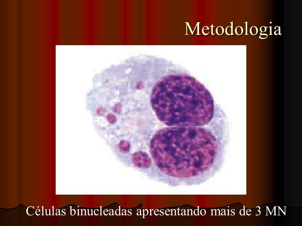 Metodologia Metodologia Células binucleadas apresentando mais de 3 MN