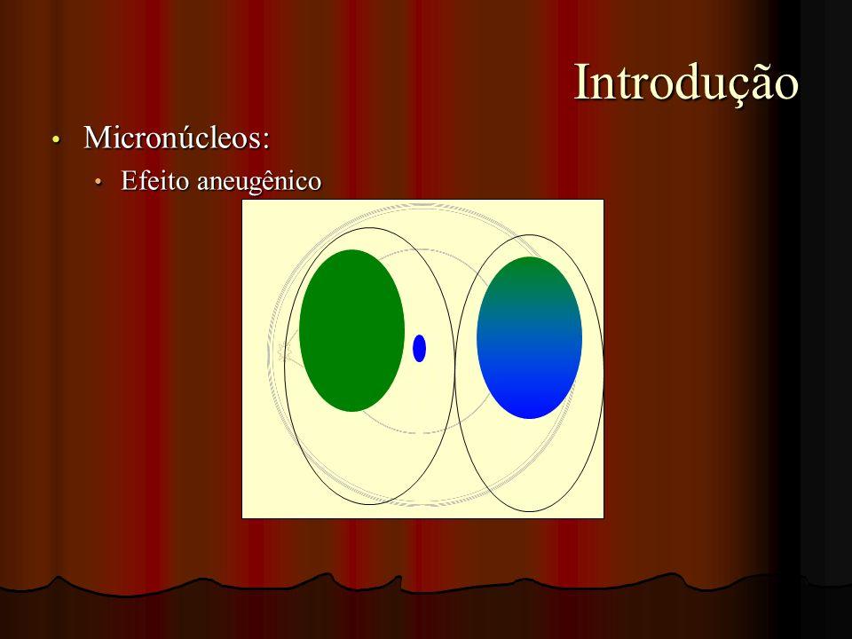 Introdução Introdução Micronúcleos: Micronúcleos: Efeito aneugênico Efeito aneugênico