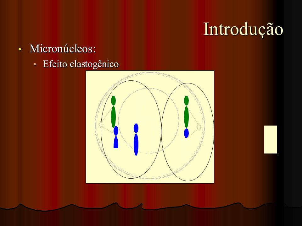 Introdução Introdução Micronúcleos: Micronúcleos: Efeito clastogênico Efeito clastogênico