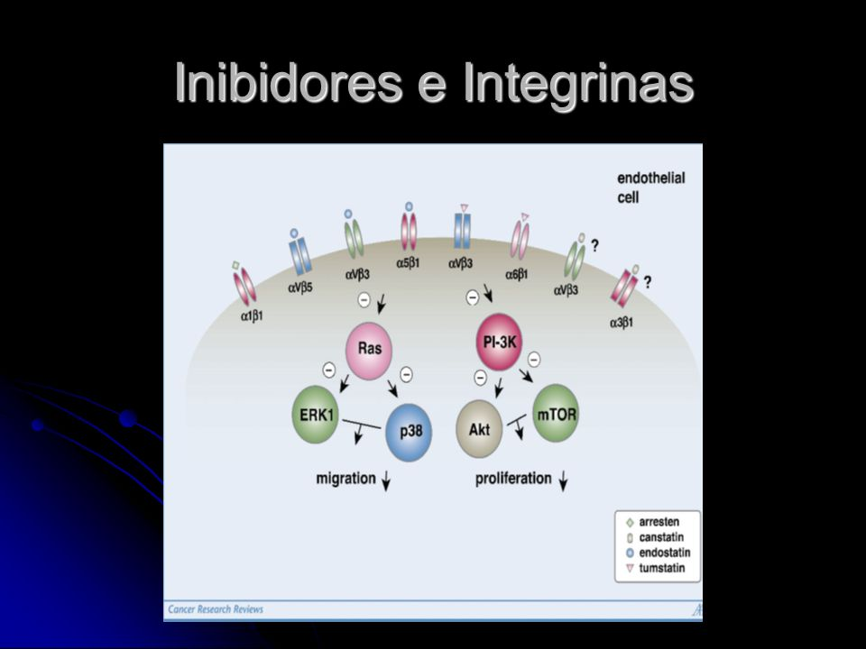 Inibidores e Integrinas