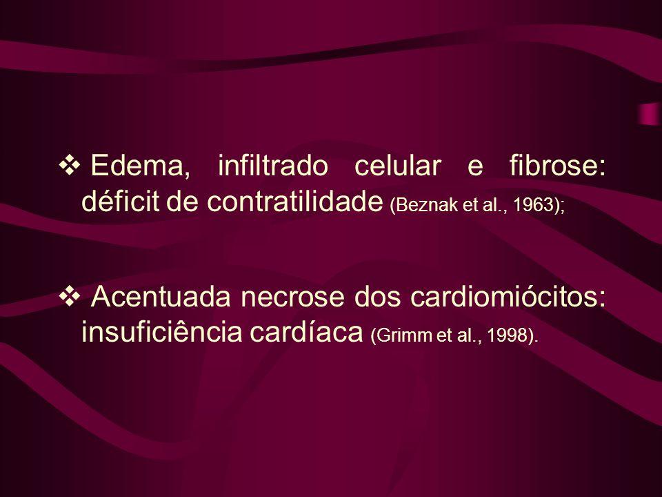 Edema, infiltrado celular e fibrose: déficit de contratilidade (Beznak et al., 1963); Acentuada necrose dos cardiomiócitos: insuficiência cardíaca (Grimm et al., 1998).