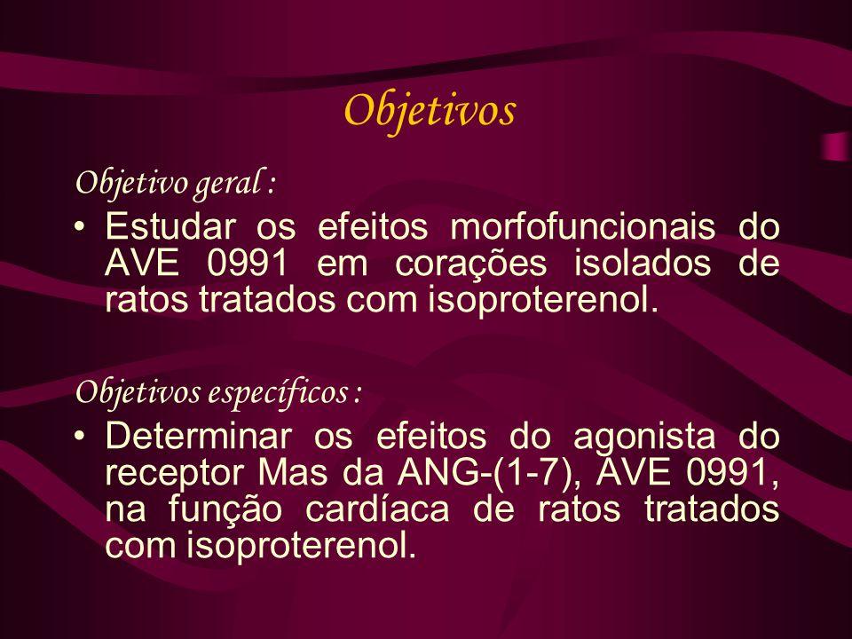Objetivos Objetivo geral : Estudar os efeitos morfofuncionais do AVE 0991 em corações isolados de ratos tratados com isoproterenol.