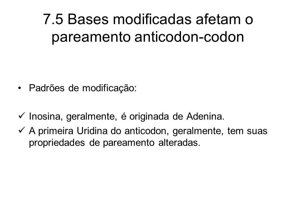 Padrões de modificação: Inosina, geralmente, é originada de Adenina. A primeira Uridina do anticodon, geralmente, tem suas propriedades de pareamento